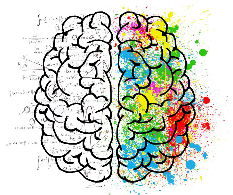 emozioni e razionalità